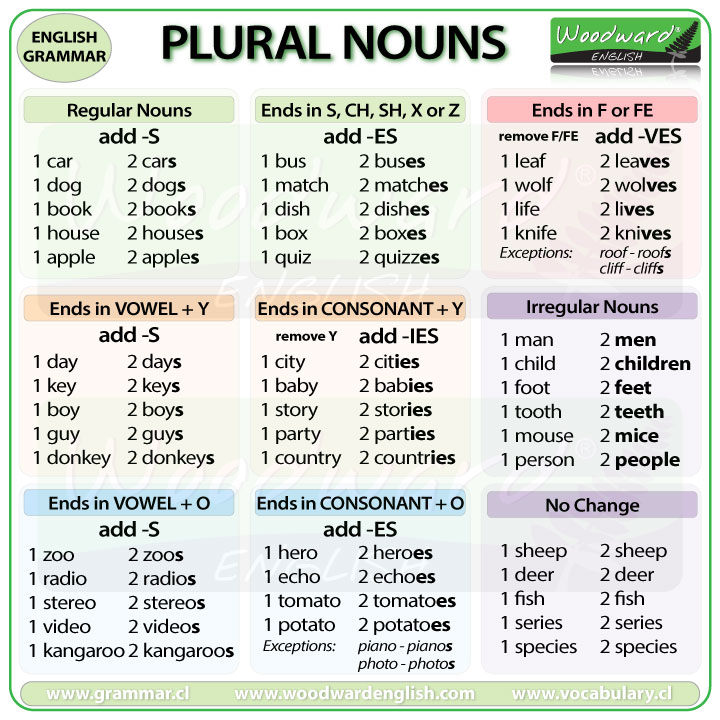 Regular and Irregular Plural Nouns in English
